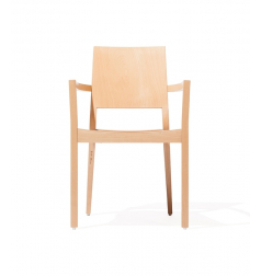 Fotel Lyon 516